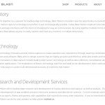 Web copy and brand statements